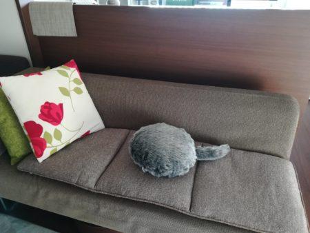 ソファーの上