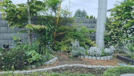 コンクリートテストピースの花壇
