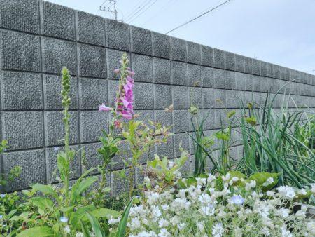 8段のブロック塀