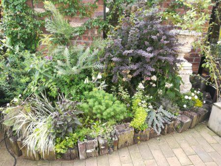 花壇のある庭