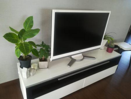 グリーンの置いてあるテレビ台